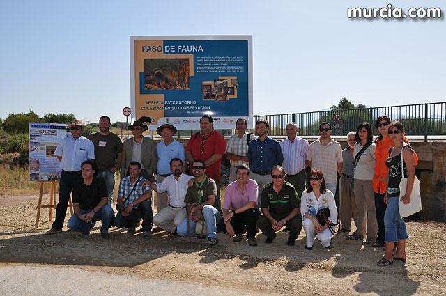 Alhama inaugura el primer Paso de Fauna del Tejón habilitado en nuestra región, Foto 1
