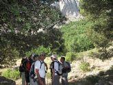 El Club Senderista de Totana realizó una salida a la Sierra de María - 19