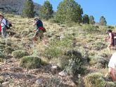 El Club Senderista de Totana realizó una salida a la Sierra de María - 27
