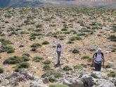 El Club Senderista de Totana realizó una salida a la Sierra de María - 31