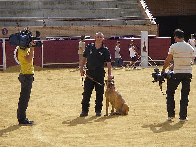 La Unidad Canina de la Policía Local de Totana obtiene el tercer premio en la categoría de búsqueda de estupefacientes, Foto 3