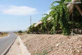 Guardia Civil, Policía Local y vigilantes rurales peinan las zonas de cultivo de uva de mesa - 3