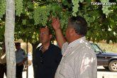 Guardia Civil, Policía Local y vigilantes rurales peinan las zonas de cultivo de uva de mesa - 10