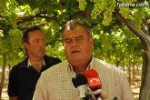 Guardia Civil, Policía Local y vigilantes rurales peinan las zonas de cultivo de uva de mesa - 20