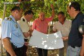 Guardia Civil, Policía Local y vigilantes rurales peinan las zonas de cultivo de uva de mesa - 24