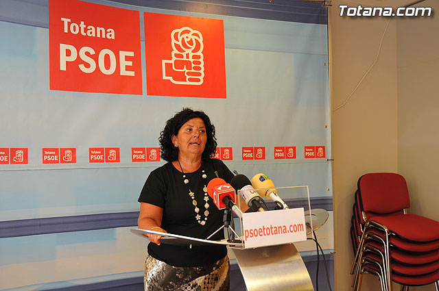 Assessment of the Economic and Financial Plan II Hall - PSOE, Foto 1