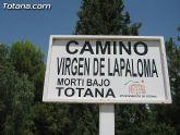 La segunda fase de alumbrado público de un tramo del camino Virgen de la Paloma se pone en funcionamiento