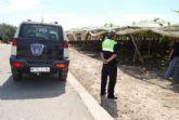 Guardia Civil, Policía Local y vigilantes rurales continúan peinando las zonas de cultivo de uva de mesa en Totana