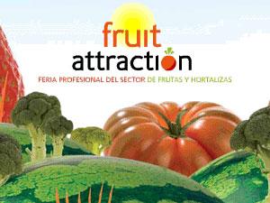 45 empresas murcianas participan esta semana en la primera edición de la feria nacional de frutas y hortalizas 'Fruit Attraction 2009', Foto 1