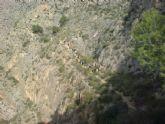 El Club Senderista de Totana realizó su primera salida del presente año ascendiendo hasta la cumbre de la Sierra de Callosa - 9