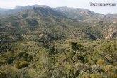 La concejalía de Medio Ambiente organiza una repoblación forestal con más de 500 plantas autóctonas en una hectárea en el paraje del monte de La Santa
