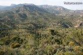 La jornada de repoblación forestal con más de 500 plantas autóctonas se celebrará este domingo 18 de abril en una hectárea del paraje del monte de La Santa