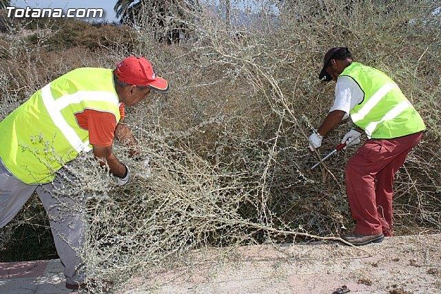 La concejalía de Servicios lleva a cabo un plan de saneamiento profundo de más de una veintena de caminos rurales, Foto 1