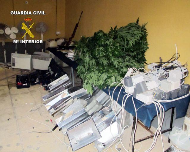 La Guardia Civil desmantela un punto de producción de marihuana en Librilla, Foto 5