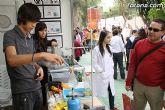 El IES Juan de la Cierva de Totana participó con un stand en la X Semana de la Ciencia y la Tecnología de la Región - 11