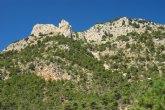 La Red Internacional de Bosques Modelo manifiesta su sorpresa por el dinamismo de la propuesta de la Regi�n de Murcia