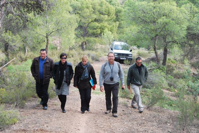 An environmental project will prevent forest fires and increase the diversity of the flora and fauna on the site of the shrine of the Holy - 2