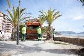 Podan las palmeras del Paseo del Puerto y de la Avenida Doctor Meca