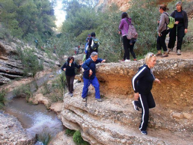 Cerca de 40 senderistas participaron en la ruta senderista que discurrió por el río Chicamo en Abanilla, Foto 1