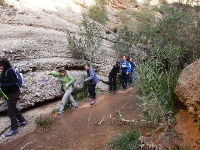 Cerca de 40 senderistas participaron en la ruta senderista que discurrió por el río Chicamo en Abanilla, Foto 2