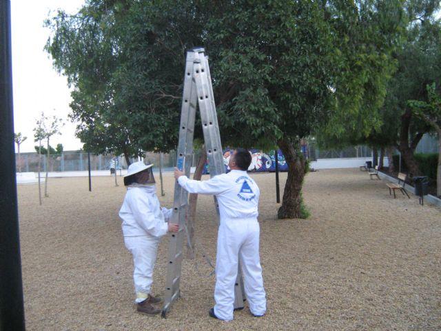 Voluntarios de Protección Civil de Totana efectúan siete salidas de emergencia, Foto 1