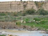 IU-Verdes pone en evidencia la nefasta depuración de aguas, demostrando la contaminación en el lecho del Río Guadalentín - 4