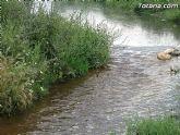 IU-Verdes pone en evidencia la nefasta depuración de aguas, demostrando la contaminación en el lecho del Río Guadalentín - 5