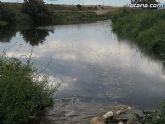 IU-Verdes pone en evidencia la nefasta depuración de aguas, demostrando la contaminación en el lecho del Río Guadalentín - 7