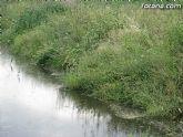 IU-Verdes pone en evidencia la nefasta depuración de aguas, demostrando la contaminación en el lecho del Río Guadalentín - 8