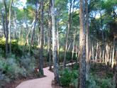 La Comunidad organiza actividades para todos los p�blicos con motivo del D�a Europeo de los Parques