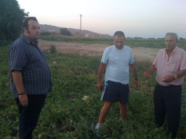Los concejales de Seguridad Ciudadana y Agricultura acompañan a los agricultores en las labores de vigilancia que se realizan en coordinación con la Policía Local, Foto 2