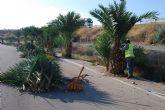 Ponen en marcha un plan de choque para limpiar los parques y zonas comunes verdes en el Polígono Industrial El Saladar