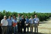 Los inspectores fitosanitarios de EEUU se muestran satisfechos con el buen estado de los c�tricos de la Regi�n de cara a la exportaci�n
