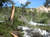 El Gobierno Regional declara bien cultural el yacimiento megalítico del Morrón, en el Parque Regional de Sierra Espuña