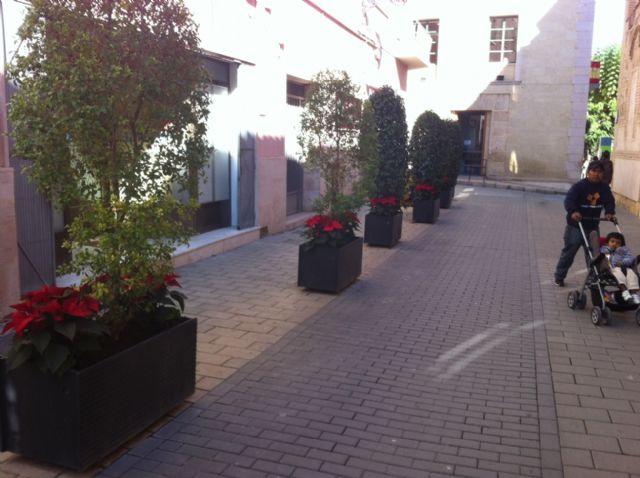 La concejalía de Servicios coloca plantas de pascua y sencillos adornos florales, Foto 1