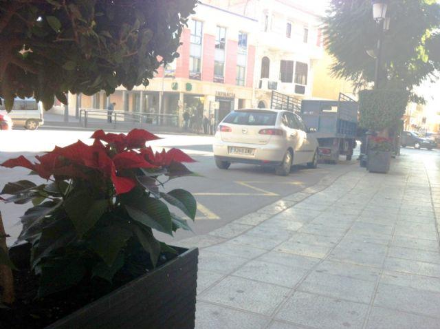 La concejalía de Servicios coloca plantas de pascua y sencillos adornos florales, Foto 2
