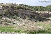 Finalizan los trabajos del proyecto Restauración y Gestión de la Rambla de Lébor como conector ecológico entre las sierras de la Lercia-Espuña y Río Guadalentín - 2