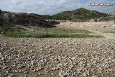 Finalizan los trabajos del proyecto Restauración y Gestión de la Rambla de Lébor como conector ecológico entre las sierras de la Lercia-Espuña y Río Guadalentín - 3