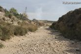 Finalizan los trabajos del proyecto Restauración y Gestión de la Rambla de Lébor como conector ecológico entre las sierras de la Lercia-Espuña y Río Guadalentín - 19