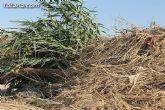 La CHS estudia los daños producidos en el término municipal de Totana por el temporal del lluvias torrenciales - 15