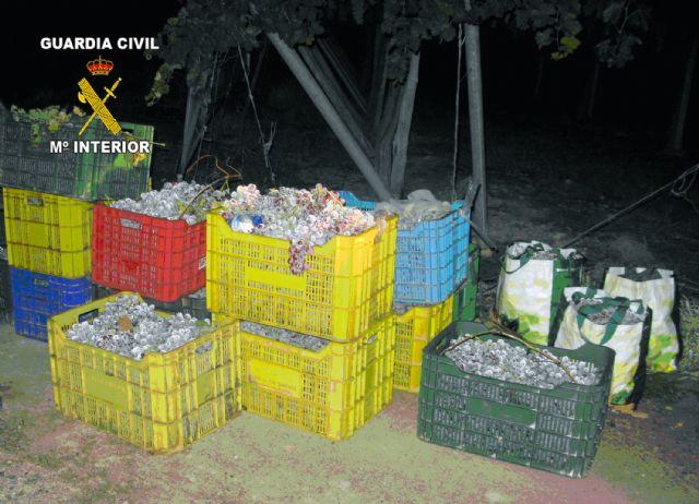 La Guardia Civil y Policía Local de Totana detienen a cinco personas por sustraer uva de una explotación agrícola, Foto 2
