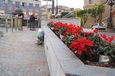 La ciudad se engalana con ornamentos navideños y adornos florales para las Fiestas Navideñas y Reyes
