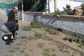 El ayuntamiento arreglará el muro del colegio Francisco Caparrós