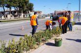 Alumnos del Programa de Cualificación Profesional en jardinería y viveros ya realizan prácticas en los parques públicos y zonas verdes de Totana