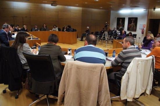 El Pleno acuerda solicitar al Gobierno de España que se desarrollen las 13 actuaciones prioritarias recogidas en el ámbito de las enfemerdades raras, Foto 1