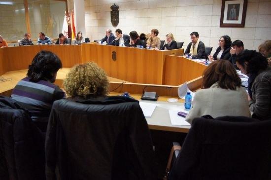 El Pleno acuerda solicitar al Gobierno de España que se desarrollen las 13 actuaciones prioritarias recogidas en el ámbito de las enfemerdades raras, Foto 2