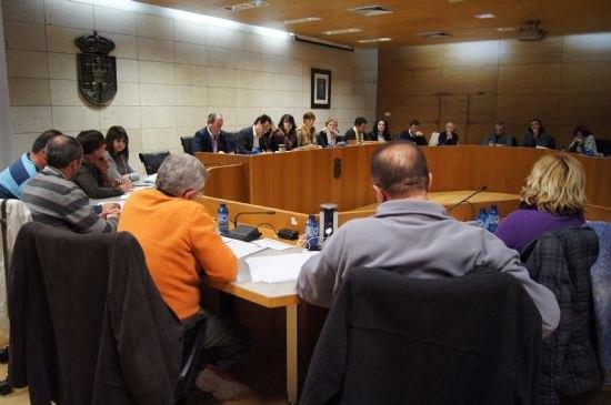 El Pleno acuerda solicitar al Gobierno de España que se desarrollen las 13 actuaciones prioritarias recogidas en el ámbito de las enfemerdades raras, Foto 3