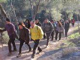 Un total de 35 senderistas participaron en la ruta organizada por la concejalía de Deportes en el Parque Regional del Valle y Carrascoy - 2