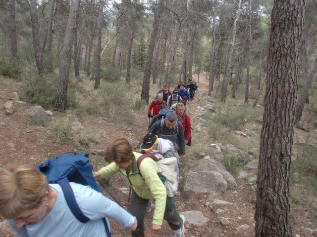 Un total de veintiún senderistas participaron el pasado domingo en una ruta que discurrió por Sierra Espuña, Foto 3