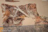 La restauración de las pinturas en los anexos de La Santa permitirán conocer la entrada primitiva a la gruta que dio origen a la construcción de la ermita - 24